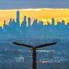 Sunrise Over Manhattan From Eagle Rock Reservation 11/24/20