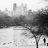 Pond Central Park-winter
