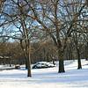 Central park snow 2