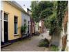 Straat in Zaltbommel