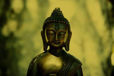 Watchful Buddha