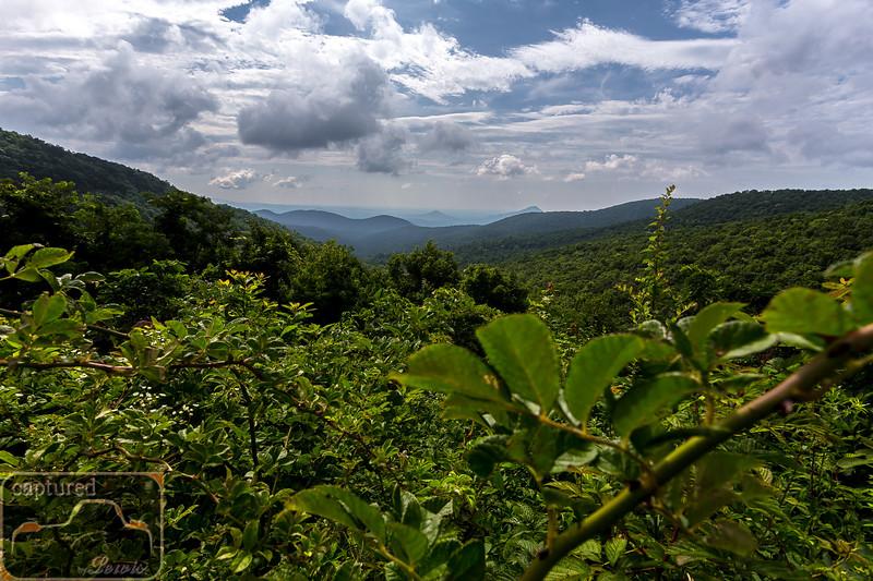 Piney Mountain Overlook