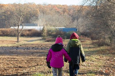 Samantha Roth 6 left and brother Patrick 9 lead the group back on the path Friday during Cheshire Land Trust's walk at Ives Farm in Cheshire November 24, 2017 | Justin Weekes / For the Record-Journal