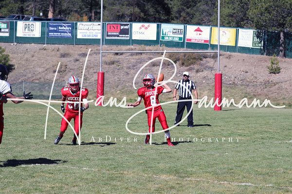 Spring Creek @ Truckee JV part 1