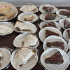 A small sampling of the many pies for sale at the 3rd annual pie sale held by the Lynn Housing Authority & Neighborhood Development at  Caggiano Plaza today in conjunction with National Pie Day, Jannuary 23. The money raised will go into the outreach fund. Photo by Owen O'Rourke