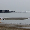 A winter view of Nahant taken from Revere Beach Blvd. Photo by Owen O'Rourke