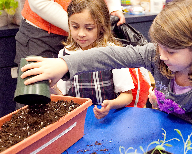 """Keira Devene, 7, left, and Kyera Edeman, 7, pour soil so that they can plant sage during the Saugus Garden Club's monthly """"Plantastic"""" event at the Saugus Public Library on Tuesday, October 9. Item Photo / Angela Owens."""