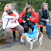 "Lynn, Barkland Dog Park, Halloween dog costume contest. Sitting with Mayor Judith Kennedy (the judge) and her dog ""Bear"" is lft. Iris Cur holding ""Benji"" and rt. Virginia Breedy, Lynn.  ""Rocky"" the shark (looking very dubious about the whole event) owned by Leslie and Kevin Tibbetts, Lynn, models his outfit and  won 3rd place."