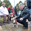 """Lynn, Barkland Dog Park, Halloween dog costume contest. Kevin Tibbetts with """"Magic"""" in a tiger outfit.  Iris Cyr and Mayor Judith Kennedy and Virginia Breedy seated.  Kennedy judged the contest."""