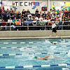 swimmers backstroke in front of a full house