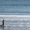 A man walks with dogs on Lynn Beach Monday January 11, 2010. Item Photo/ Reba M. Saldanha