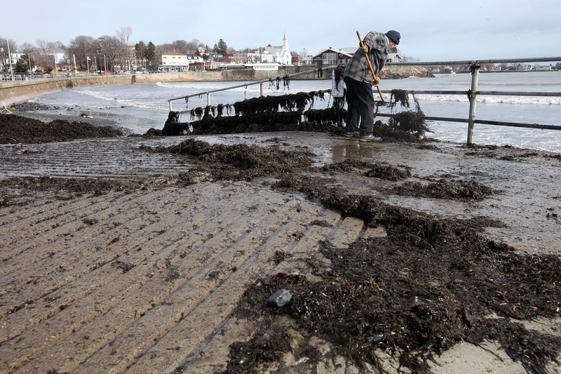 Swampscott DPW's John Gillette removes seaweed from the sidewalks along the waterfront Monday March 1, 2010. Item Photo/ Reba M. Saldanha