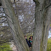 Andrew Comeau, 9, and Ashley Emerson, 9, hide in a tree at Gallagher Park Monday APril 19, 2010. Item Photo/ Reba M. Saldanha