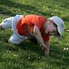 Brayden Holt, 3, tumbles down a hill near his cousin Samantha Kiley's St Mary's softball game at Bishop Fenwick Wednesday April 7, 2010. Item Photo/ Reba M. Saldanha