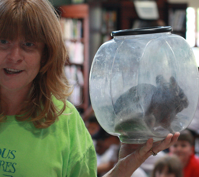 Children at the Lynn Library got to see a bunch of animals today as Holly Gosselin from Curios Creatures and animals such as Dusty the chinchilla, were on hand. This is Dusty's bath tub. A chinchilla does not get wet; he washes himself in dust.