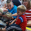 Boston Soluri, Sean Reeves and Piper Soluri meets an American Alligator called Chomper when Holly Gosselin from Curious Creatures visited the Lynn Library today.