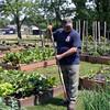 Bobby Ward works on the Nahant Community Garden behind the Johnson School Thursday June 16, 2011. Item Photo/ Cyrus Moulton