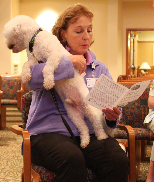 Oliver is more interested in what is behind him than the prayers being said for him by Mary Landry during the blessing of pets ceremony at Booksby Village in Peabody today.