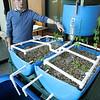 Andy Dillenbeck explains the aquaponics model at Lynn's SPIN center on Union St Monday Jan 31, 2011. Item Photo/ Reba M. Saldanha