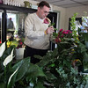 Mike Eddows of Sea Side Florist arranges lilies in his Lynnway store Monday March 29, 2011. Item Photo/ Reba M. Saldanha