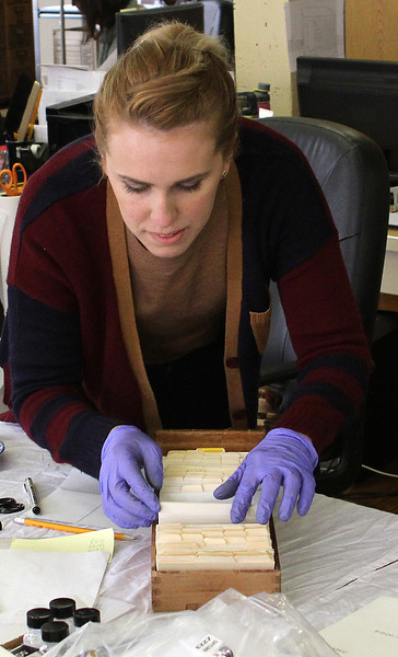 Kali Mason, Assistant Registrar Museum & Collectors Resources, working up stairs sorting items at the Lynn Museum. Photo by Owen O'Rourke