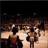ARa2077-cheerleaders