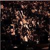 ARa2931-cheerleaders and fans 1
