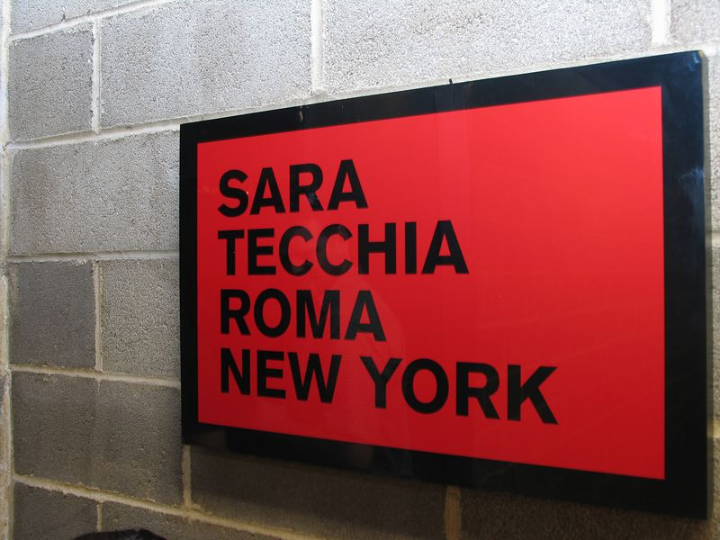 Grand Opening of Sara Tecchia Roma-New York Gallery on Thursday, September 15, 2005 at the Sara Tecchia Roma-New York Gallery, 529 West 20th Street, New York City, NY (PHOTO CREDIT: ©2005 Manhattan Society.com by Chris London)