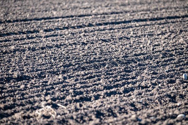 Newly ploughed soil on land at the Lincoln site off Boundary Road.