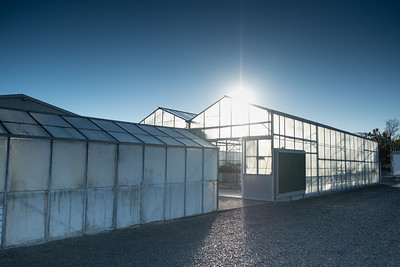 Green house or glass house onsite at Manaaki Whenua Landcare Research in Lincoln.
