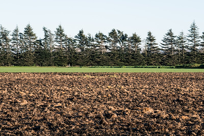 Ploughed ground and soil at Lincoln site taken in early morning sun with slight frosts.