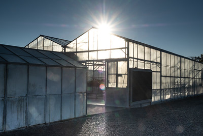 Green house or glass house onsite at a research facility in Lincoln. Image by Bradley White