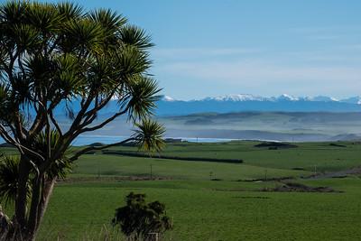 Farm land at Tihaka from Orepuki_Riverton Highway