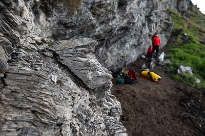 Search for coprolites on a Manaaki Whenua field trip.  Funded by the Marsden Fund.