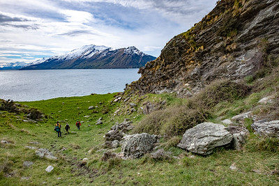 The field team search for coprolites on a Manaaki Whenua field trip.  Funded by the Marsden Fund.  Team headed by Dr Janet Wilmshurst, Palaeoecology Lab Leader from the Ecosystems & Global Change team.