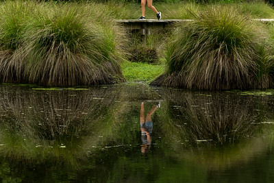 Reflection in a wetland pond with girl walking past, Manaaki Whenua Image by Bradley White