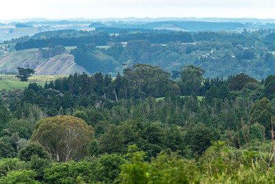 Landscape image of land use near Busy Park in Whanganui, New Zealand.  Manaaki Whenua image by Bradley White