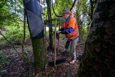 Predator Free field work