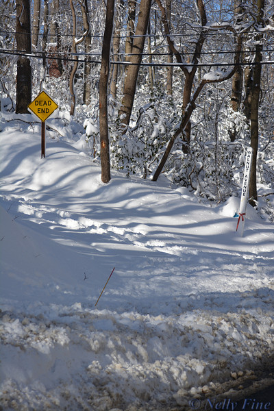 Walnut Avenue under snow