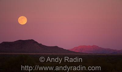The Mojave Desert, in western Arizona