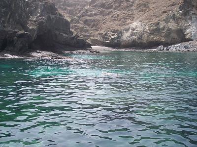 038gsnorkeling coral reef4