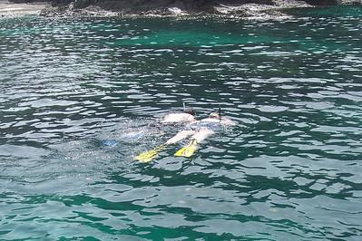 038fsnorkeling coral reef3