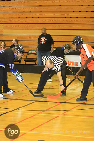 Adaptive Hockey