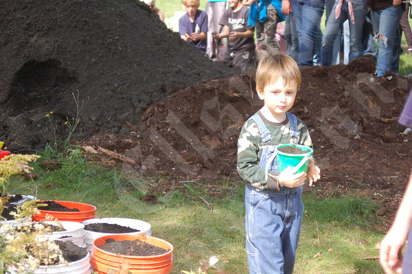 Sedgwick Elementary School Greenhouse: September 23, 2010