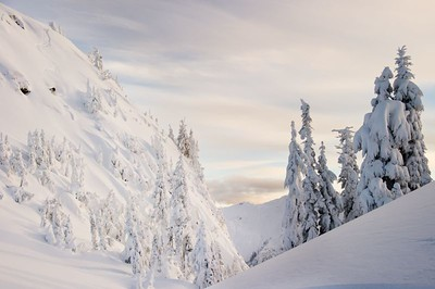 Backcountry Skiing nearby Mount Baker Ski Area during early season December 2010.