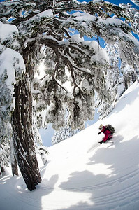 Zack Giffin, Molly Baker and Santiago all ski around the Backcountry nearby Mount Baker, WA.