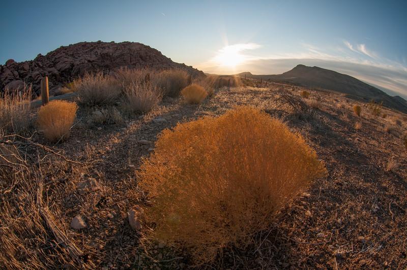 Red-Rocks-Nevada-photo-by-Gabe-DeWitt-12