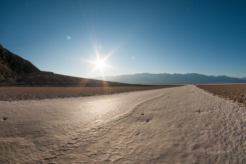 Nevada-133