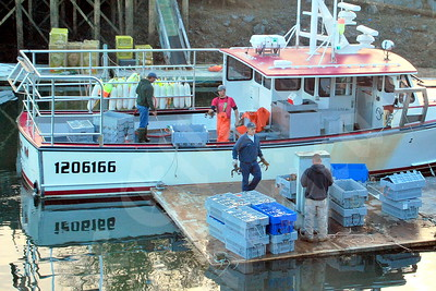 Dana Rice Jr. (on board at left) and sternman unload the day's catch from Rice's boat, the Tyler M, at Bunker's Harbor. Co-op employees take possession of the lobsters in containers and weigh them. LARRY PETERSON PHOTO