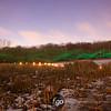 CS7G0397A- Park Nicollet Luminary LoppetA